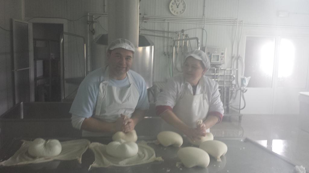 Fabricando Queso de Cabra Artesano